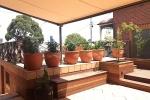 15 Curzon Terrace After